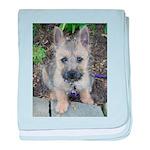 Emma Cairn Terrier 1 baby blanket