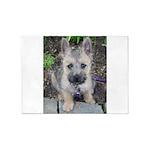 Emma Cairn Terrier 1 5'x7'Area Rug
