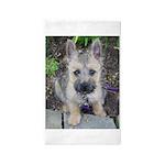 Emma Cairn Terrier 1 3'x5' Area Rug