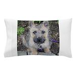 Emma Cairn Terrier 1 Pillow Case