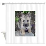 Emma Cairn Terrier 1 Shower Curtain