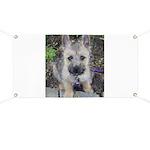 Emma Cairn Terrier 1 Banner