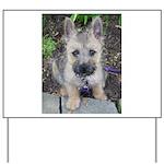 Emma Cairn Terrier 1 Yard Sign