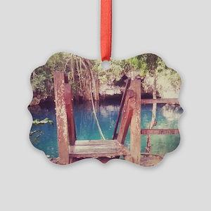Cenote Mexico  Picture Ornament