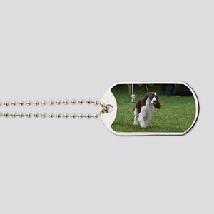 Springer Spaniel  Dog Dog Tags
