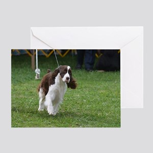 Springer Spaniel  Dog Greeting Card