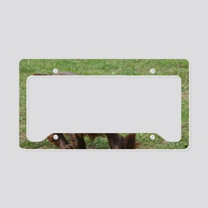 Chocolate Cocker Spaniel License Plate Holder