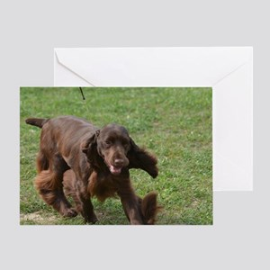 Chocolate Cocker Spaniel Greeting Card