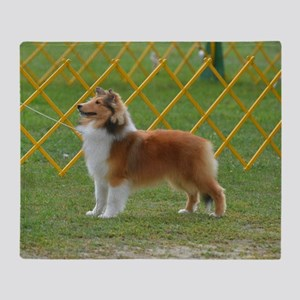 Sheltie at Attention Throw Blanket