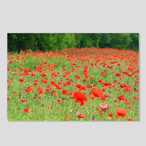 Field of Red Postcards (Package of 8)