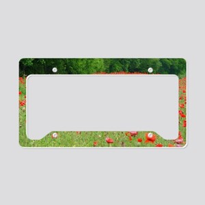Field of Red License Plate Holder