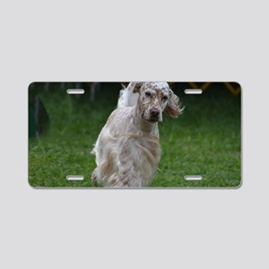 Adorable English Setter Aluminum License Plate