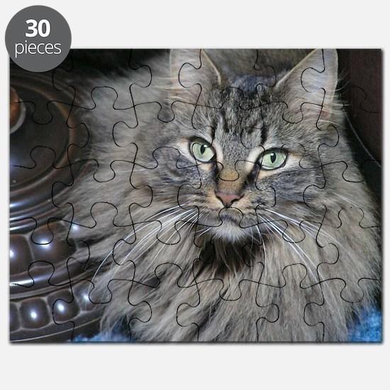 Looker Cat Puzzle