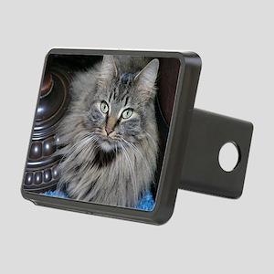 Looker Cat Rectangular Hitch Cover