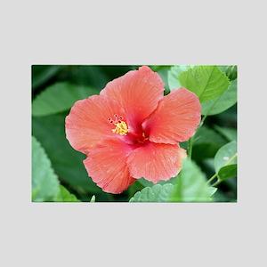Beautiful Flower Rectangle Magnet