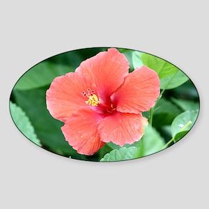 Beautiful Flower Sticker (Oval)