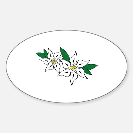Edelweiss Decal