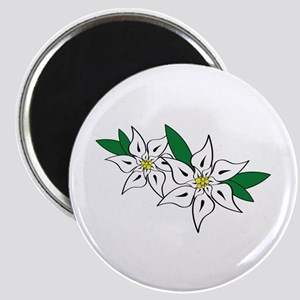 Edelweiss Magnets
