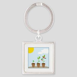 Seedlings Keychains