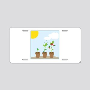 Seedlings Aluminum License Plate