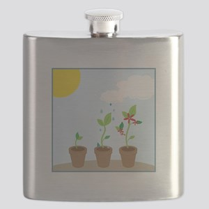 Seedlings Flask