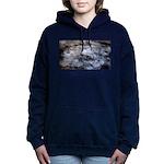 Ice figures Women's Hooded Sweatshirt