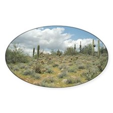 Cactus Pastoral Sweep Sticker (Oval)