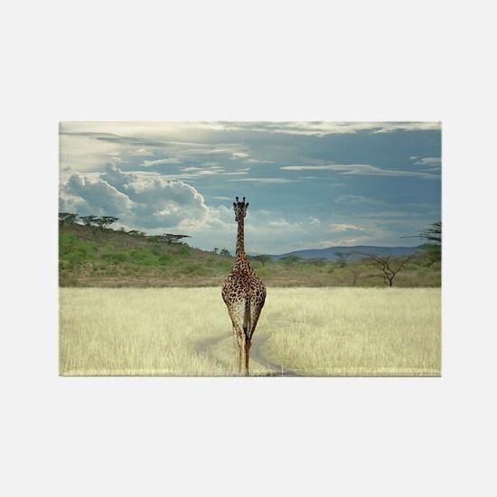 African Giraffe Magnets