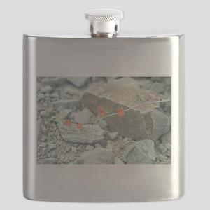 Desert Blossoms Flask