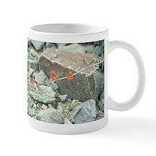 Desert Blossoms Mug