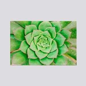Green Flower Rectangle Magnet