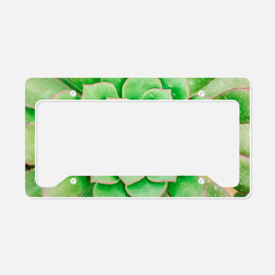 Green Flower License Plate Holder