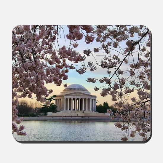 Jefferson Memorial Mousepad