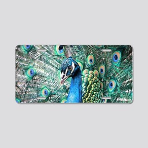 Beautiful Peacock Aluminum License Plate