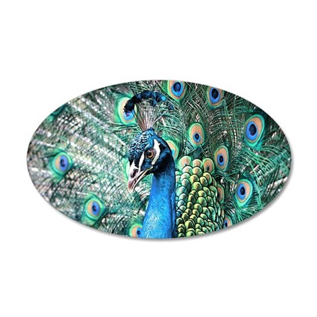 Beautiful Peacock Wall Decal