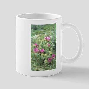 Pink Cactus Desert Mug