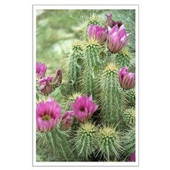 Pink Flower Cactus Posters