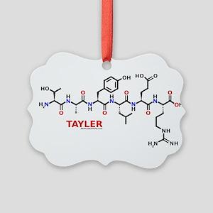 Tayler molecularshirts.com Ornament