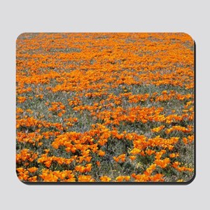 Poppies Forever Mousepad