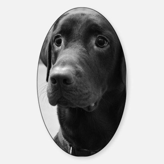 Black and White Labrador Sticker (Oval)