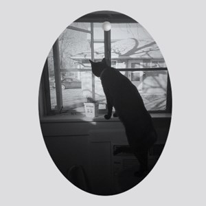 A cat & his window Oval Ornament