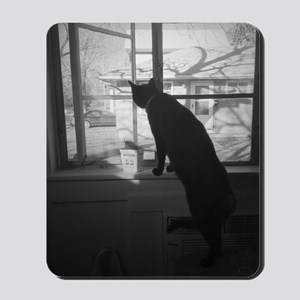 A cat & his window Mousepad