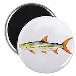 Tigerfish Magnets