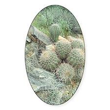 Saguaro Cactus Swirl Sticker (Oval)