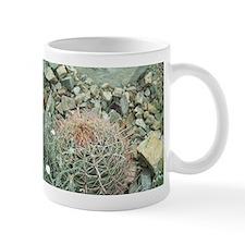 Southwest Desert Mug