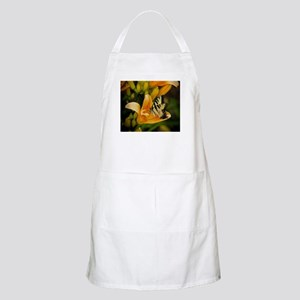 Swallowtail Butterfly Apron