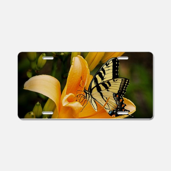 Swallowtail Butterfly Aluminum License Plate