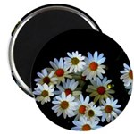 Blossoming darkness Magnets