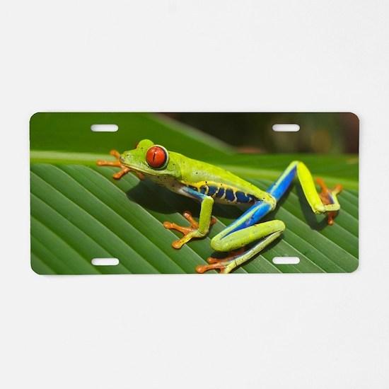 Cute Tree frog Aluminum License Plate