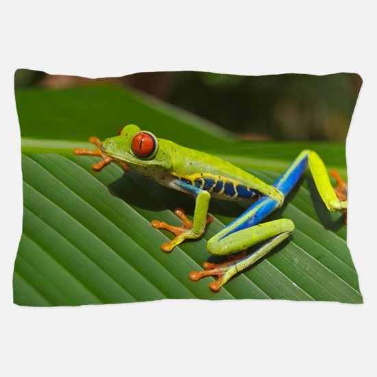 Unique Frog Pillow Case